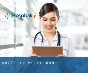 Ärzte in Welsh Run