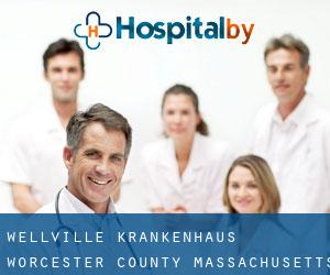Wellville Krankenhaus (Worcester County, Massachusetts)